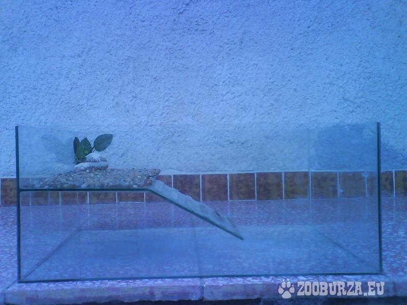 Akvárium pre korytnačky