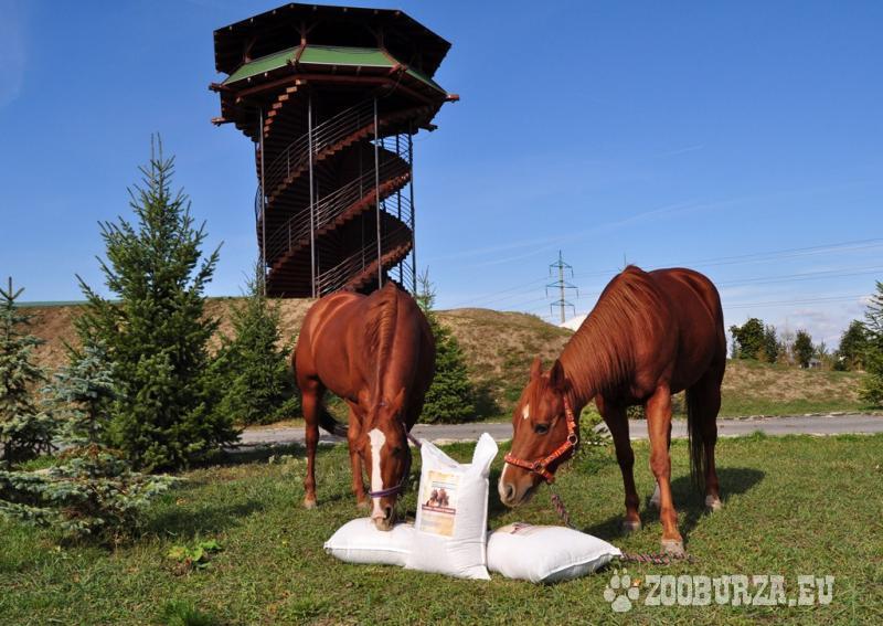 Komplexné miagané krmivo pre kone