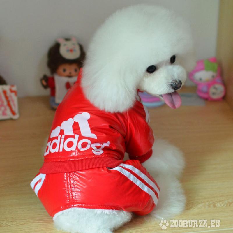 Oblečenie pre psíkov...a iné vecičky