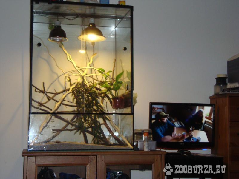 Velke terarium 70 x 60 x 100 cm