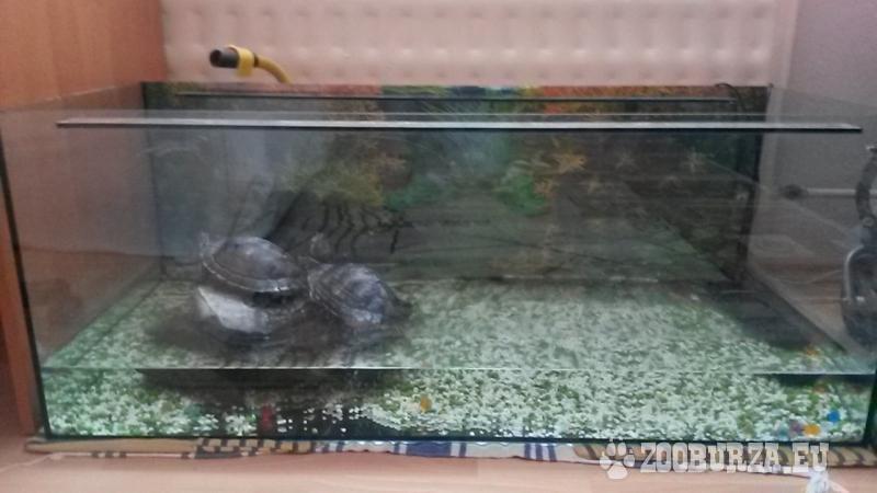 Akvárium 100 x 40 x 40 cm