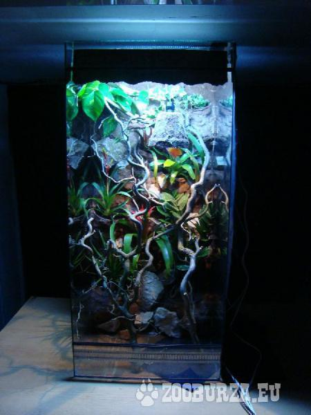 Terárium-akvárium výroba  na mieru,