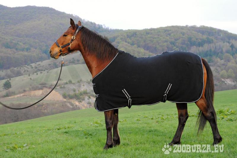Akcia - Odpocovacia deka na koňa