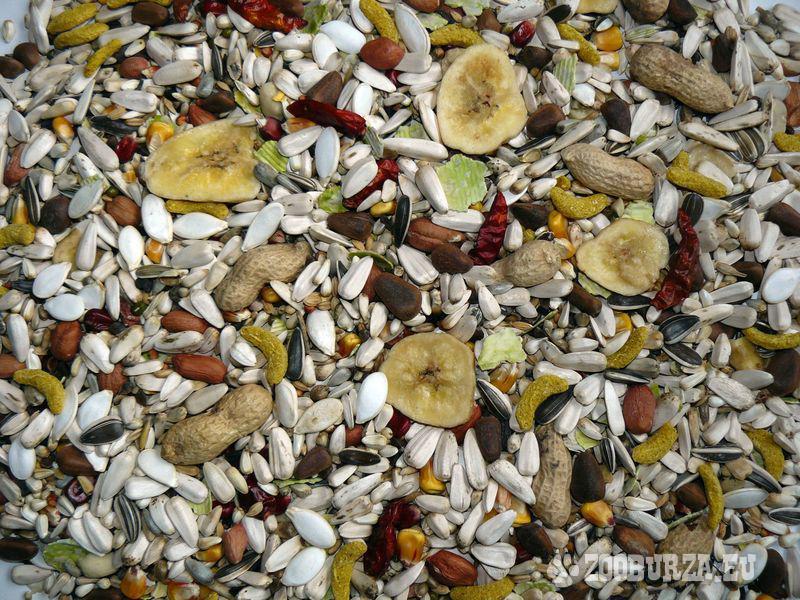 Špičkové krmivo pre veľké papagáje - Delux