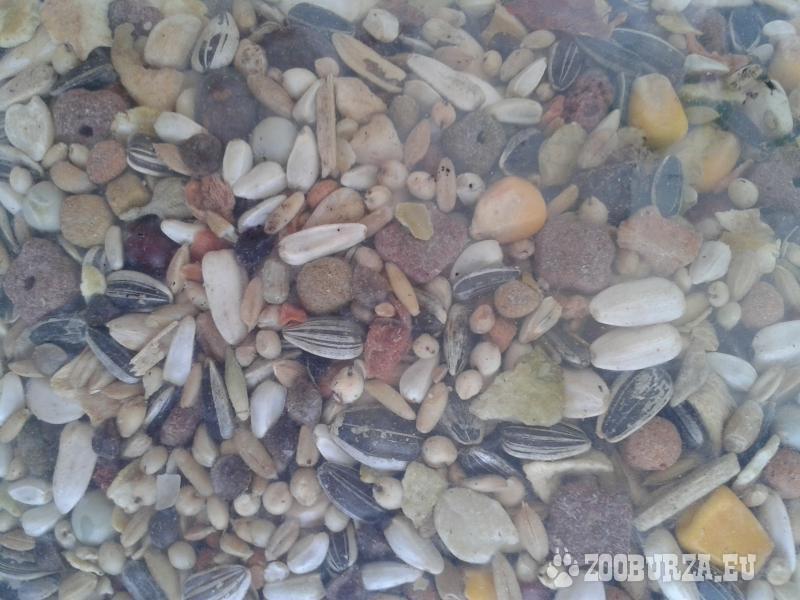 Kvalitné krmivo pre veľké papagáje - Elita