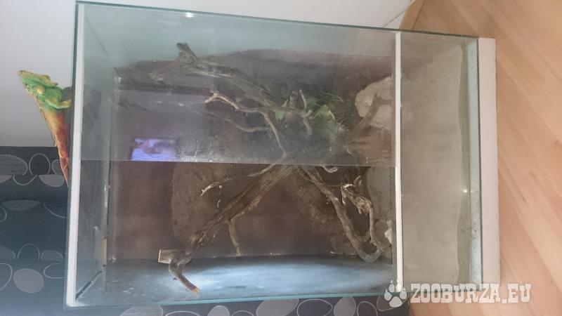 Terárium pre chameleóna