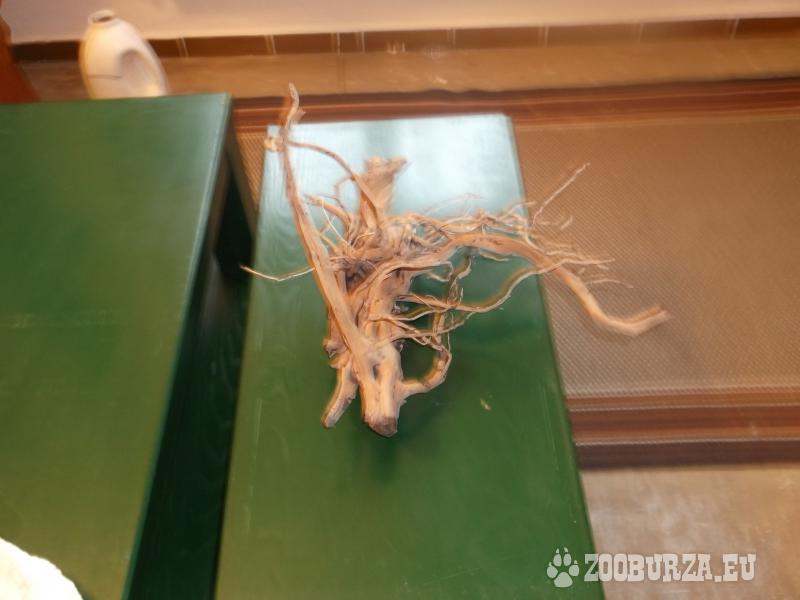 originálny drevený koreň do aqvária