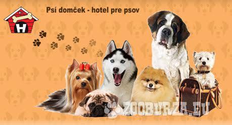 Psí domček-hotel pre psov