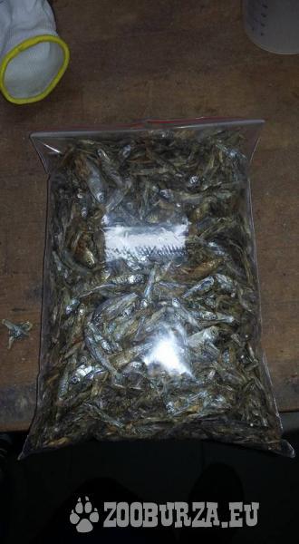 sušene rybicky pre vodne korytnacčky