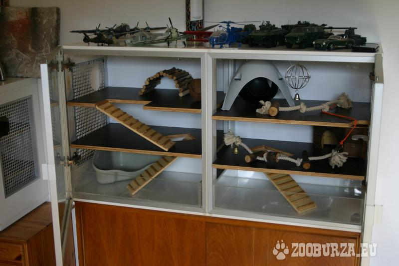 Terárium pre potkany, činčily alebo iné hlodavce