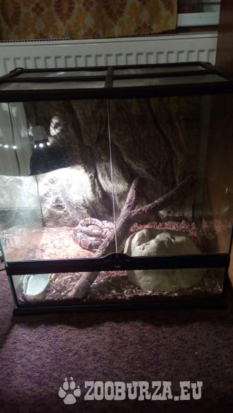 Terárium pre hady s výbavou