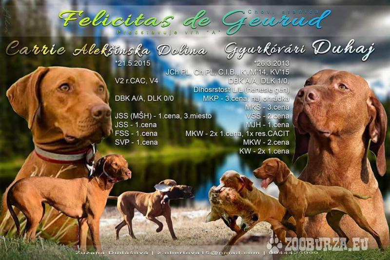 CHS Felicitas de Geurud