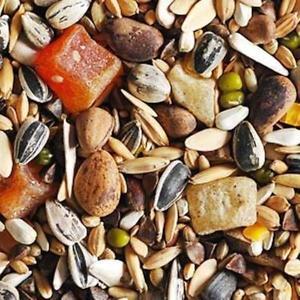 Krmivo pre veľké papagáje s ovocím a orechmi.