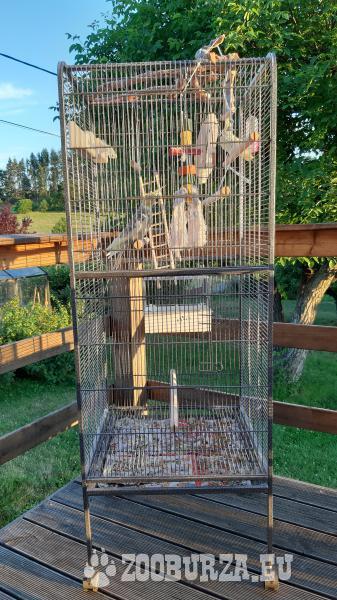 2x voliera+pár papoušků
