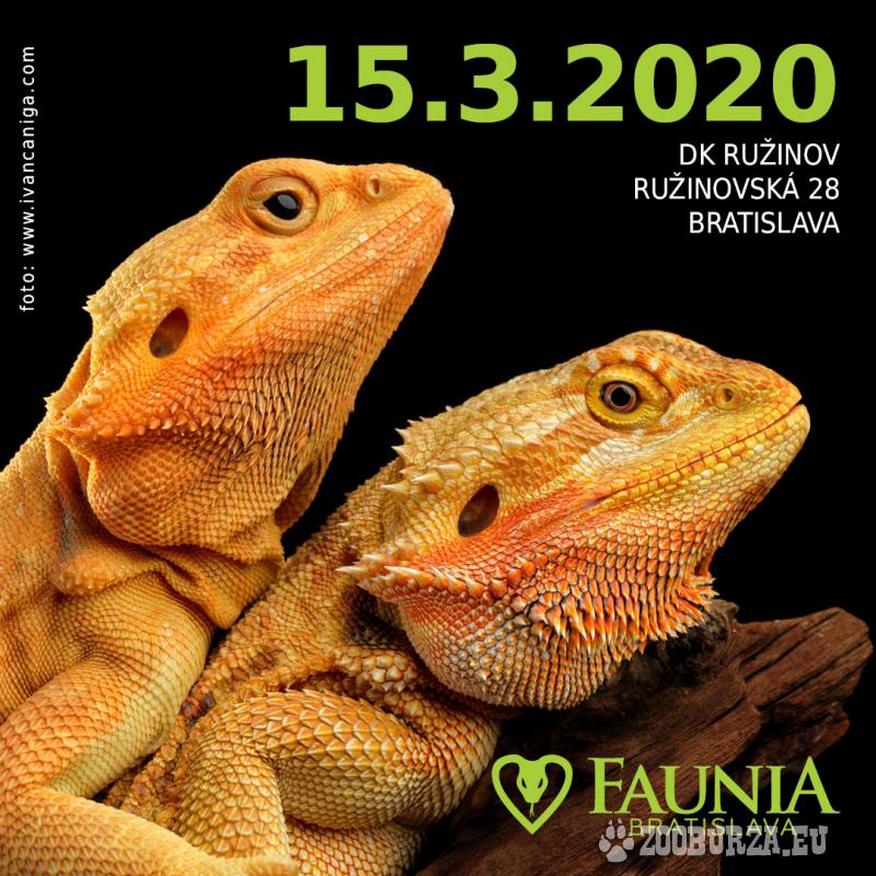 FAUNIA BRATISLAVA 15.3.2020