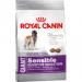 Royal Canin Giant Sensible