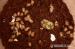 Achatina imaculata - šnek africký, oblovka rezavá